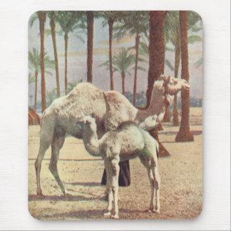 Camels Mouse Mat