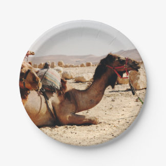 Camels Paper Plate