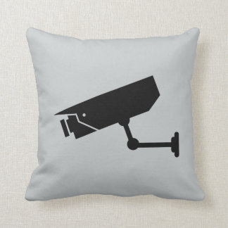 Camera and a CCTV Camera Cushion