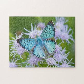 Cameron County, Texas. Blue Metalmark Jigsaw Puzzle
