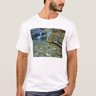 Cameron Falls in Waterton Lakes National Park in T-Shirt