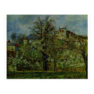 Camille Pissarro - Orchard of Flowering Trees 1877 Post Cards