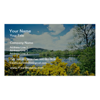 Camlough Lough, County Down, Ireland  flowers Pack Of Standard Business Cards