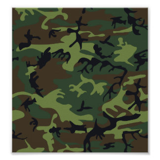 Camouflage Green Poster