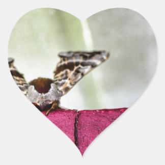 Camouflage moth heart sticker