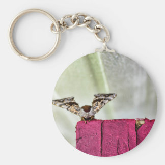 Camouflage moth keychain