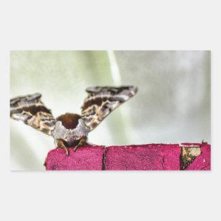 Camouflage moth rectangular sticker