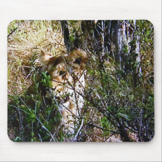 """CAMOUFLAGED LION MOUSE PAD"" MOUSE PAD"