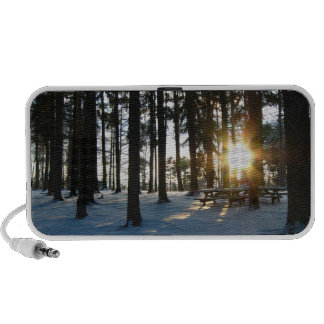 Camp Anawanna in the Snow iPhone Speaker