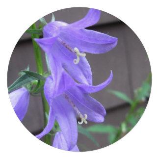Campanula Garden Flower Custom Invitations
