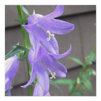 """Campanula Garden Flower 5.25"""" Square Invitation Card"""