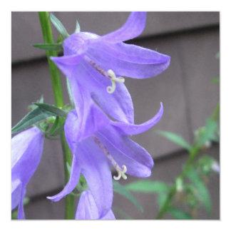 Campanula Garden Flower 13 Cm X 13 Cm Square Invitation Card