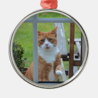 Can I Come In Pumpkin. Christmas Ornament