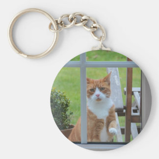 Can I Come In Pumpkin. Key Ring