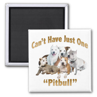 Can t Have Just One Pitbull Magnet