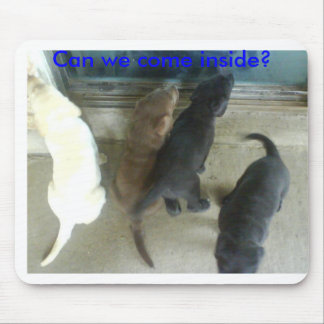 Can we come inside? mouse pad