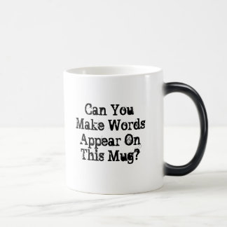Can You Make Words Appear mug