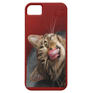 Can you touch your nose? iPhone 5 cases