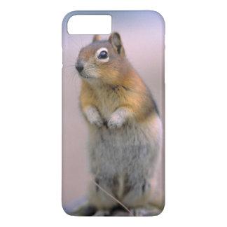 Canada, Alberta, Banff NP. A Golden-mantle iPhone 8 Plus/7 Plus Case