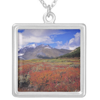 Canada, Alberta, Banff NP. Huckleberries bloom Silver Plated Necklace