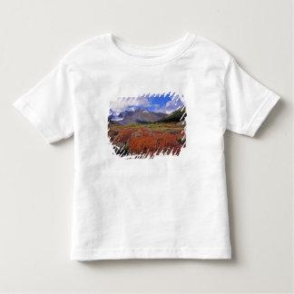 Canada, Alberta, Banff NP. Huckleberries bloom T Shirt