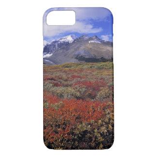 Canada, Alberta, Banff NP. Huckleberries provide iPhone 8/7 Case