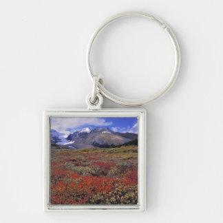 Canada, Alberta, Banff NP. Huckleberries provide Key Ring