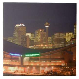 Canada, Alberta, Calgary: City Skyline from Tile