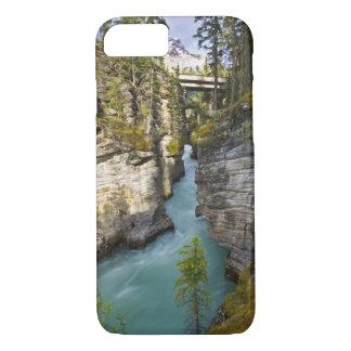 Canada, Alberta, Jasper National Park, Athabasca 2 iPhone 7 Case