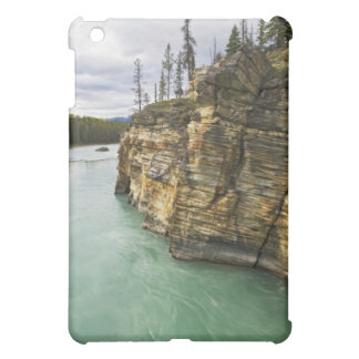 Canada, Alberta, Jasper National Park, Athabasca iPad Mini Case