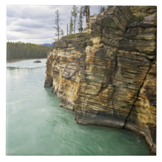 Canada, Alberta, Jasper National Park, Athabasca Tile