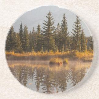 Canada, Alberta, Jasper National Park Coaster