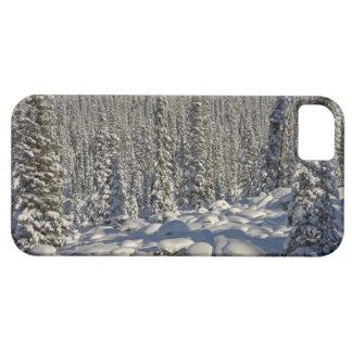 Canada, Alberta, Jasper National Park. iPhone 5 Case