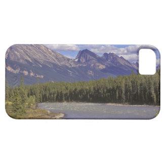 Canada, Alberta, Jasper National Park. Large iPhone 5 Cases