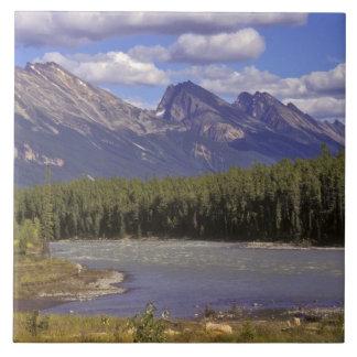 Canada, Alberta, Jasper National Park. Large Tile