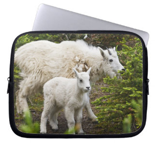 Canada, Alberta, Jasper National Park, Mountain Laptop Sleeve