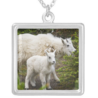 Canada, Alberta, Jasper National Park, Mountain Silver Plated Necklace
