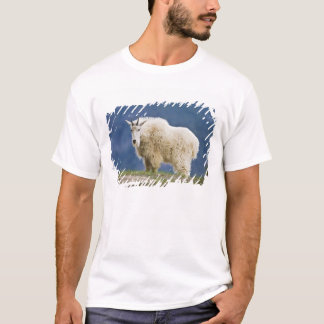 Canada, Alberta, Jasper National Park, T-Shirt