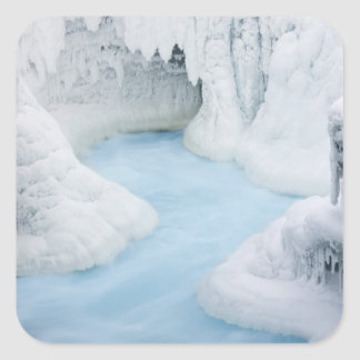 Canada, Alberta, Jasper National Park. The Square Sticker