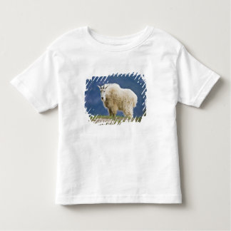 Canada, Alberta, Jasper National Park, Toddler T-Shirt