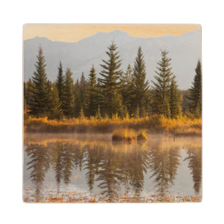 Canada, Alberta, Jasper National Park Wood Coaster