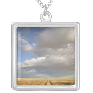 Canada, Alberta, Stand Off: Landscape with Silver Plated Necklace