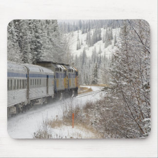 Canada, Alberta. VIA Rail Snow Train between Mouse Mat