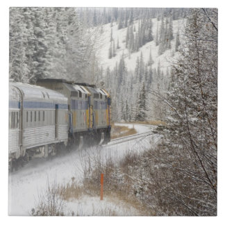 Canada, Alberta. VIA Rail Snow Train between Tile