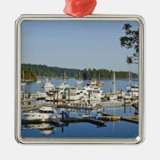 Canada, BC, Gulf Islands, Salt Spring Island, Silver-Colored Square Decoration