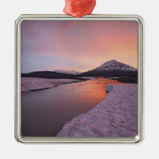 Canada, British Columbia, Alsek River Valley. Christmas Ornament