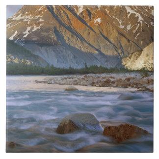 Canada, British Columbia, Alsek River Valley. Large Square Tile