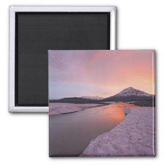 Canada, British Columbia, Alsek River Valley. Magnet