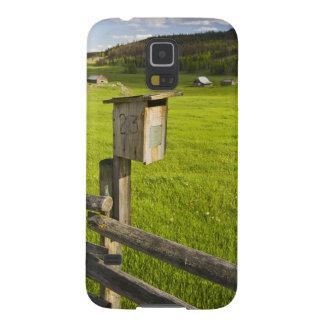 Canada, British Columbia, bluebird house on Galaxy S5 Case