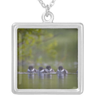 Canada, British Columbia,Common Goldeneye, 2 Silver Plated Necklace